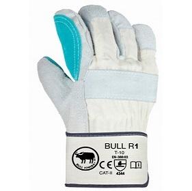 BULL R1